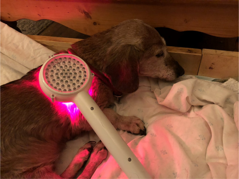 Photobiomodulation Therapy (red light therapy)